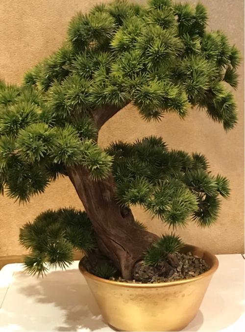 Дерево Бонсай искусственное Бельгия